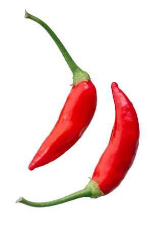 Aji Brazilian Bonanza pepper (C. baccatum), ripe pods. Stock Photo