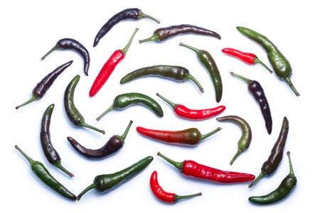 Purple Haze chile peppers, ripe, ripening and unripe pods (C. annuum), top view. Clipping paths, shadows separated