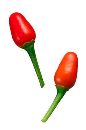 Pequin or piquin chile peppers, ripe pods with pedicels (Capsicum annuum var. glabriusculum).