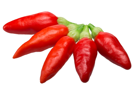 Tabasco chile peppers (C. frutescens), ripe pods. Clipping path