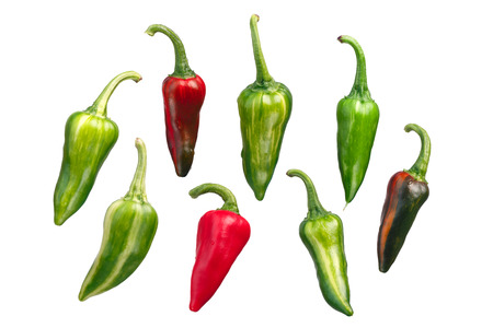 Fish chile peppers (Capsicum annuum). Clipping path for each pod