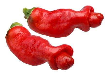 Peter or Penis Pepper (Capsicum annuum). Clipping paths for each Stock Photo