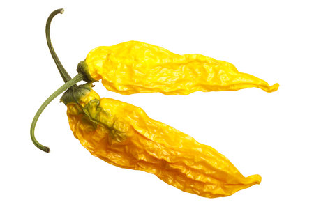Dried Aji Pineapple pepper (Capsicum baccatum). Top view, clipping paths
