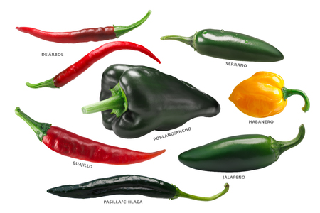 Mexican chile peppers: Arbol, Pasilla, Guajillo, Poblano, Habanero, Jalapeno. Stock Photo