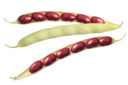 Haricots rouges (Phaseolus vulgaris), gousse coupée en deux, graines exposées, vue du dessus