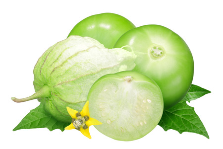 Tomatillo or Mexican husk tomato (Physalis philadelphica fruit) husked, with flower and leaves