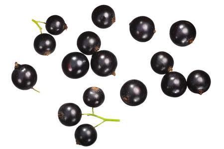 Blackcurrant (berries of Ribes nigrum), top view Archivio Fotografico