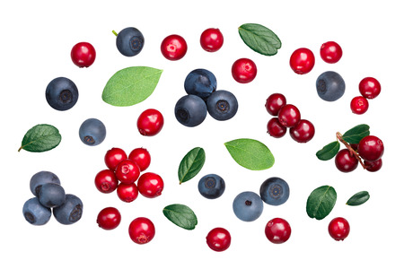 Lingonberry and Bilberry (fruits of Vaccinium vitis-idaea, V. myrtiilus) with leaves, top view