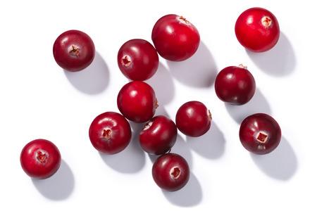 Cranberries (Vaccinium oxycoccus), top view. Direct hard light Standard-Bild