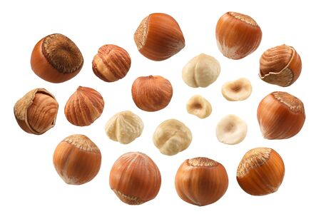 Noisettes (graines de Corylus avellana) décortiquées, amandes entières, en coque, décortiquées, un ensemble de
