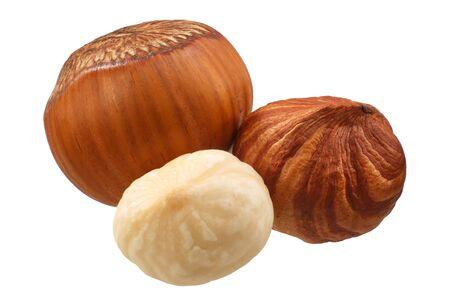 Hazelnuts (Corylus avellana seeds) shelled, whole kernel, in shell, skinned, group of Zdjęcie Seryjne