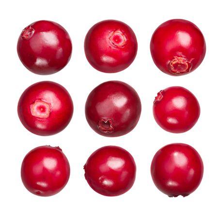 Lingonberry (fruits of Vaccinium vitis-idaea), isolated