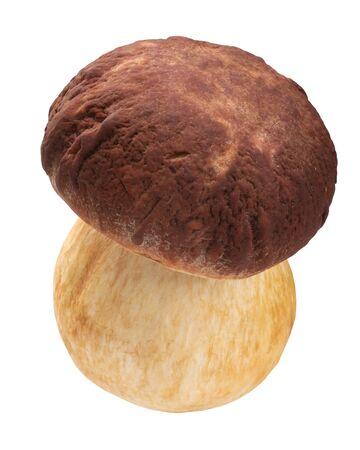 Cep or Porcino mushroom (Boletues edulis fruit body), isolated