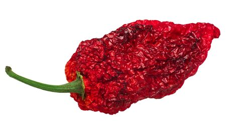 Dried Fatalii pepper (Capsicum chinense fruit), whole pod, isolated