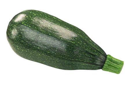 Baby striped zucchini (Cucurbita pepo fruit), isolated, top view 免版税图像