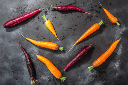 Carrots, orange and purple anthocyanin-rich on washed concrete backdrop, top view