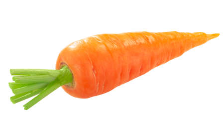 Royal Chantenay carrot, short-rooted variety w/ tapered tip, isolated Zdjęcie Seryjne