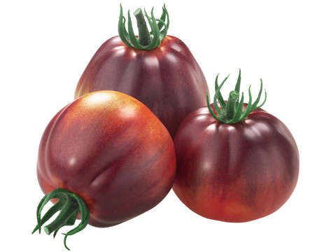 Blue Pear heirloom tomatoes, anthocyanin-rich, isolated