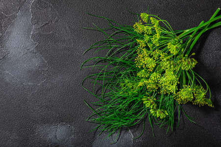 Fresh Dill (Anethum graveolens) leaves, florets, fruits atop black textured backdrop w/ copy space, top view Zdjęcie Seryjne