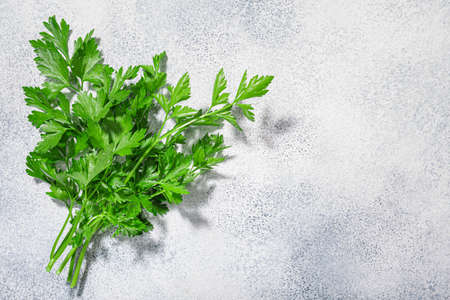 Flat-leaved Parsley (Petroselinum crispum) leaves atop grey textured backdrop w/ copy space, top view