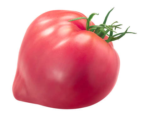 Sterling Old Norway heirloom tomato, pink oxheart type isolated on white