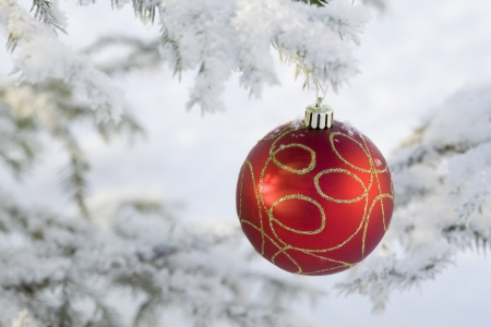 New Years sphere on a Christmas tree against snow