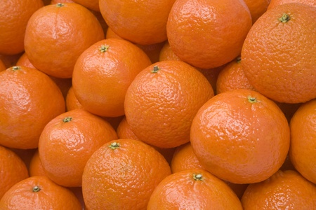 The big tangerines lying equal numbers. Stock Photo - 9008898