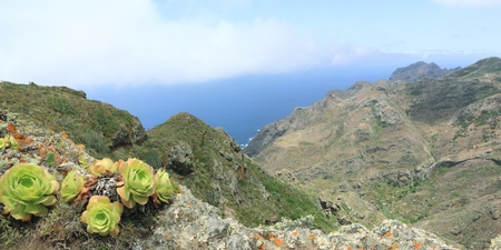 pano: Landscape in national park Anaga, Tenerife, Canary Islands Stock Photo