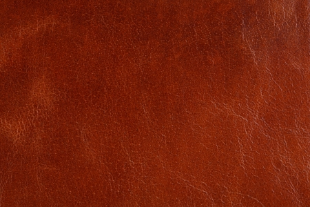 Background with texture of pale brown leather