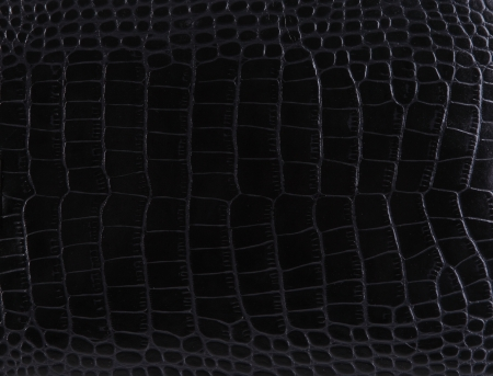 Material with texture of a crocodile leather