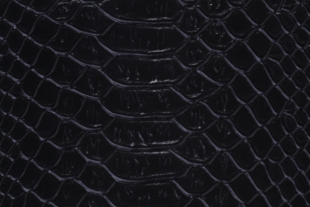 Background with texture of a snakeskin