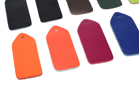 Exemplar: Multi-colored samples of leather on white background
