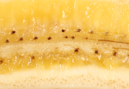 longitudinal: Texture of banana on a longitudinal section, a close up