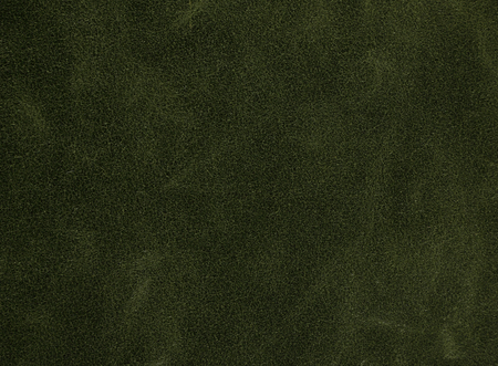 Close up texture of a green imitation leather Stock Photo