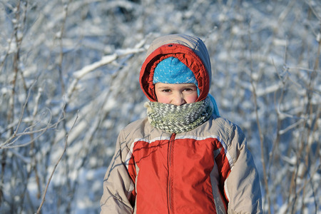 Portrait of the child walking on a frost in warm clothes with a scarf which closes a part of the face. Sunny frosty day, the boy stay against the background of the bushes and trees covered with hoarfrost. Stock Photo