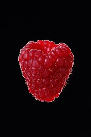 One berry of raspberries on a black background, close-up