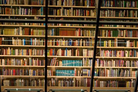 Library bookshelf filled with books