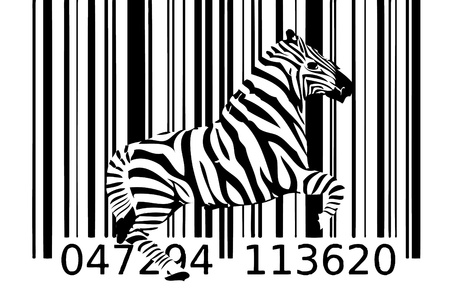 zebra barcode design art idea photo