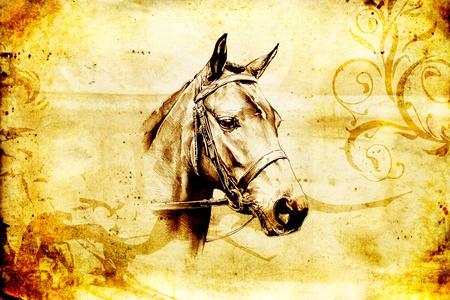 Freehand paard hoofd potloodtekening Stockfoto