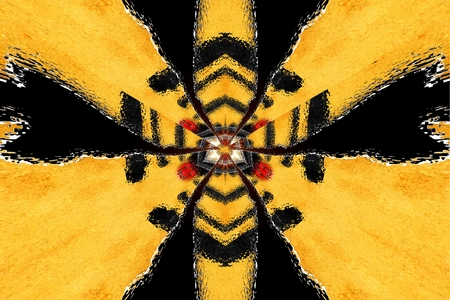 symmetry: A star abstraction fractal symmetry