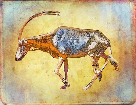 antelope: Antelope vintage art illustration Stock Photo