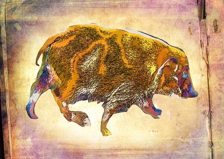 tusk: Boar vintage art illustration Stock Photo