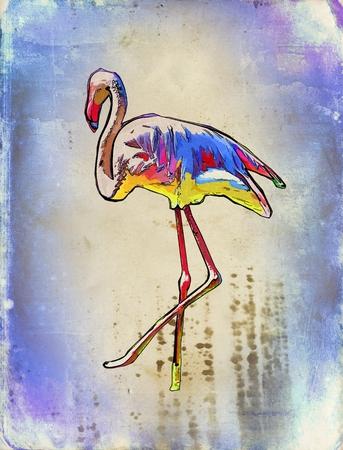 pelican: Pelican vintage art illustration Stock Photo