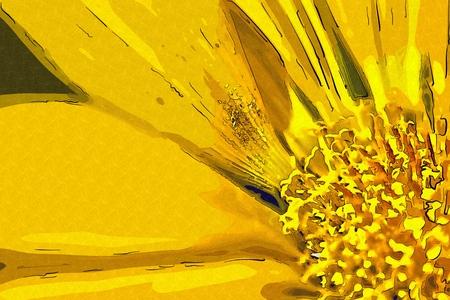 macro: Flower macro illustration drawing Stock Photo