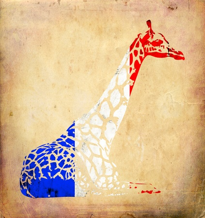 france painted: Giraffe flags isolated on vintage background