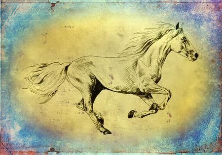 フリーハンド馬頭アート イラスト 写真素材