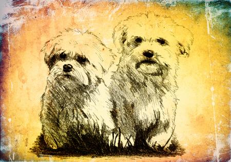 mongrel: Funny dog ??illustration on vintage background