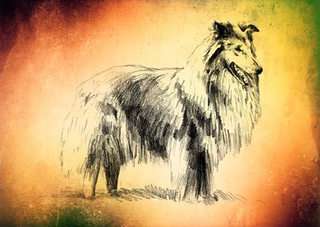 mongrel: Funny dog ??art illustration on vintage background
