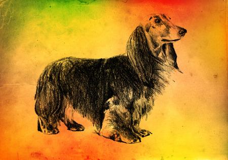 Funny dog ??art illustration on vintage background