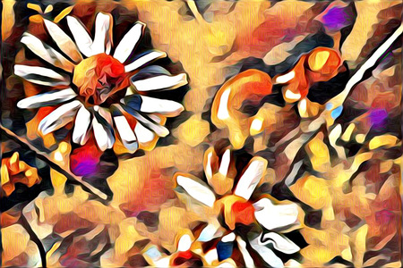 abstraction flower art illustration
